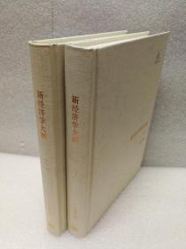 新经济学大纲(上下)(三联经典文库)