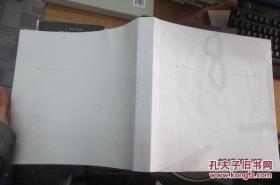 意象古今:徐乐乐人物精品集 (12开平装)