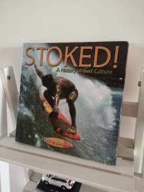 stoked! a history of surf culture