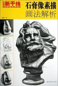 藝考新干線·美術高考系列叢書:石膏像素描畫法解析