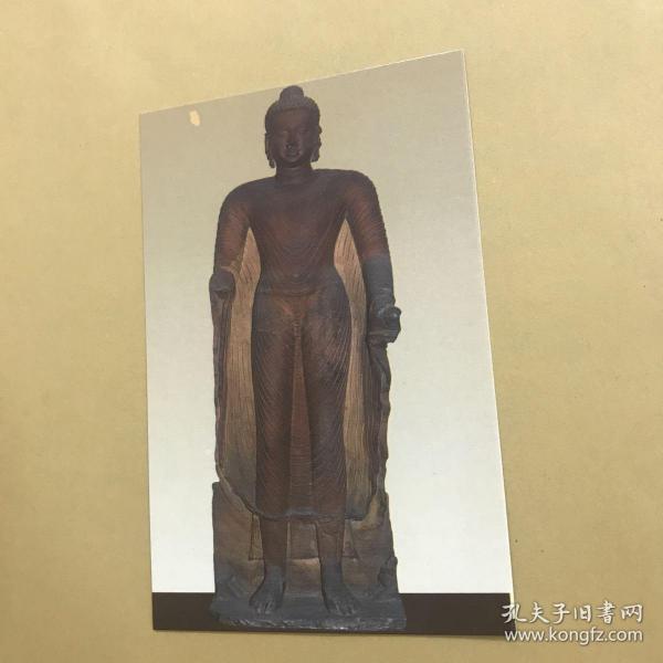 印度博物館 Mathura馬圖拉佛像 明信片。