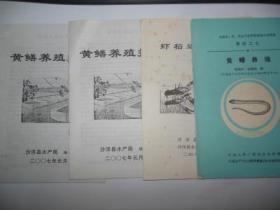 虾稻连作技术
