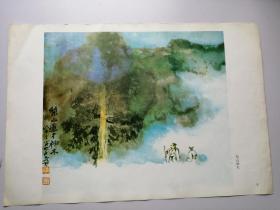 張大千畫集(第七輯)選頁8:梨山神木(冊頁26*37.5cm)折疊寄送