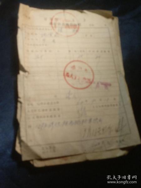 甘肃省粮食供应转移证明(1960/3)