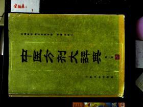 中医方剂大辞典  第十册   2