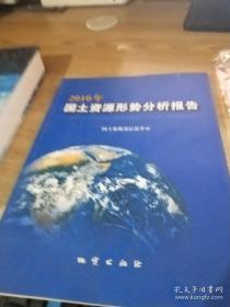 2010国土资源形势分析报告2010