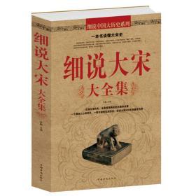 正版 细说大宋大全集 北宋和南宋文学文化典藏 历史知识解读认识书籍宋朝那些事儿 中国历史读物宋朝史