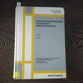 Photochemical processes in organized molecular systems