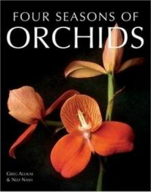 Four Seasons of Orchids-四季兰花