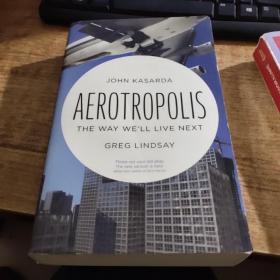 Aerotropolis[航空商业城]