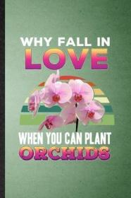 Why Fall in Love When You Can Plant Orchids-既然能种兰花,为什么还要谈恋爱呢