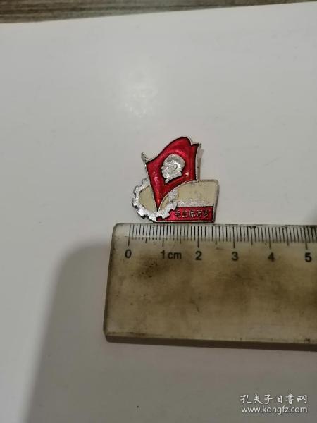 毛主席像章,異形,正面毛主席萬歲,背面重工系統,67.11,少見