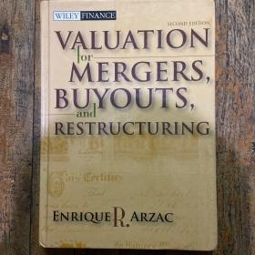 Valuation: Mergers, Buyouts and Restructuring