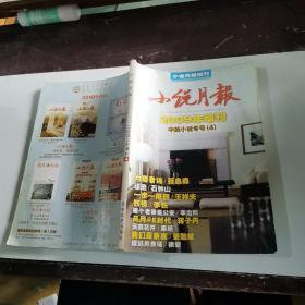 小说月报2009年增刊