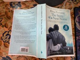 Elena Ferrante The Story of a New Name