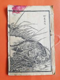 老石印画谱(当标本出)