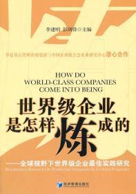 世界級企業是怎樣煉成的:全球視野下世界級企業最佳實踐研究