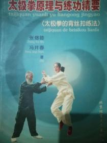 太极拳原理与练功精要。