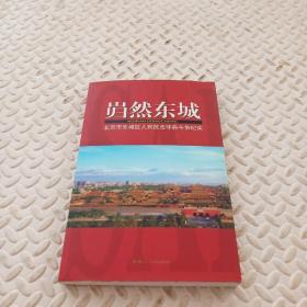 岿然东城:北京市东城区人民抗击非典斗争纪实