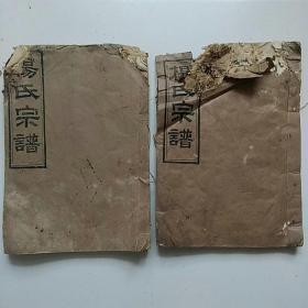 民国杨氏族谱(首卷 三十 三十一卷 诒环堂)
