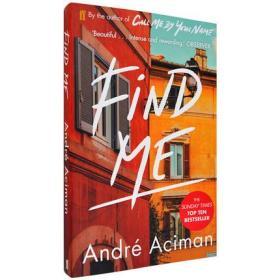 英文原版 请以你的爱找寻我 Call Me by Your Name续集 平装 请以你的名字呼唤我 夏日终曲 André Aciman Find Me: A Novel