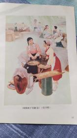 画页(散页印刷品)--颗颗种子育新苗(任川)618