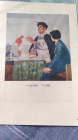画页(散页印刷品)--凉山在前进(张文瑞)618