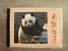 1989年 大熊猫明信片