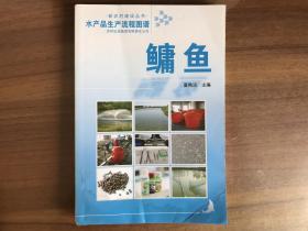 鳙鱼(水产品生产流程图谱)