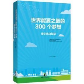 世界能源之巔的300個夢想:神華成功探秘