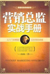 營銷總監實戰手冊