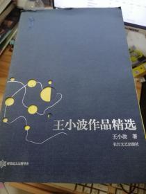 王小波作品精选:跨世纪文丛精华本