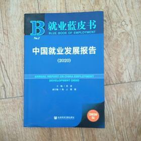 中国就业发现报告2020版