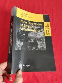 New Directions in Spatial Econometrics       (小16开 )  【详见图】