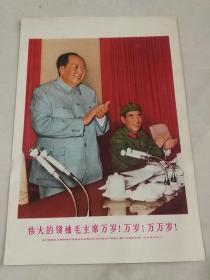 伟大的领袖毛主席万岁!万岁!万万岁!(毛林像,32开宣传画)