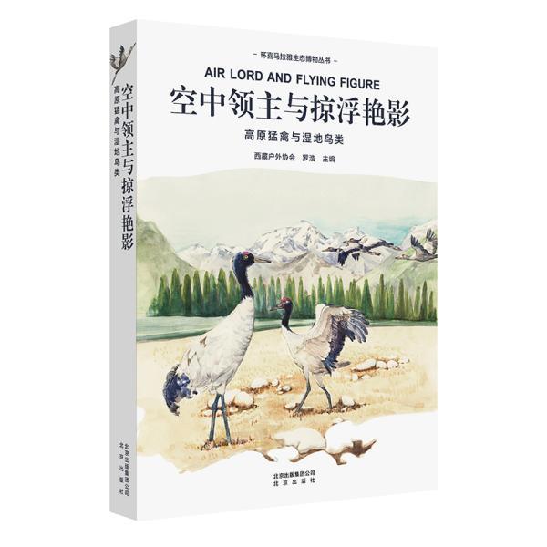 环喜马拉雅生态博物丛书:空中领主与掠浮艳影--高原猛禽与湿地鸟类