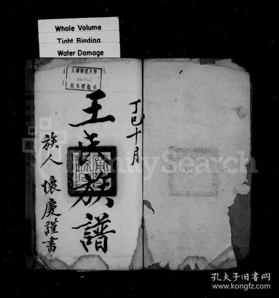 王氏族谱 [10卷] 复印件