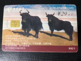 IC電話舊卡(CNT-IC-P14(4-2))野牦牛