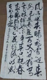 张芳强先生书——毛泽东诗词咏梅