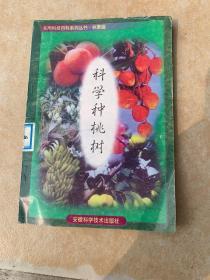 白菜类蔬菜栽培