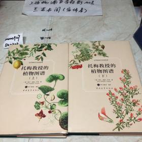托梅教授的植物图谱上下2册全