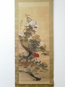 椿椿山 花鸟图 手绘 日本直邮 日本回流字画