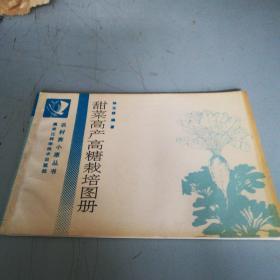 甜菜高产高糖栽培图册