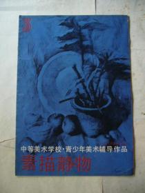 素描静物(3) 中等美术学校·青少年美术辅导作品 14幅作品