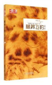 正版 林莽飞豹(修订版)/儿童文学  作家书系牧铃9787514818406中国少儿 书籍
