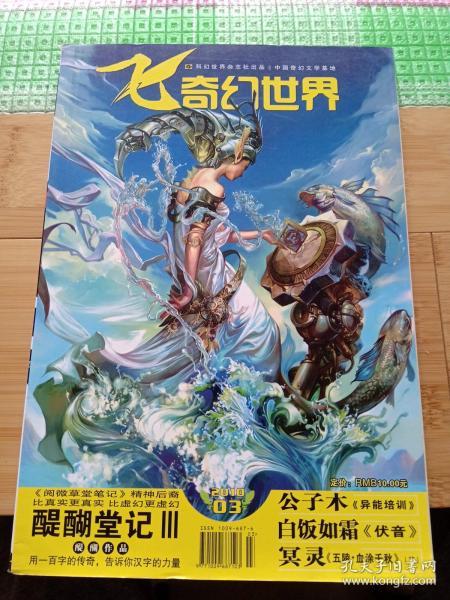 飛奇幻世界2010 3