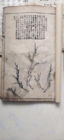 康 熙白纸精刻     芥子园画传 三册。