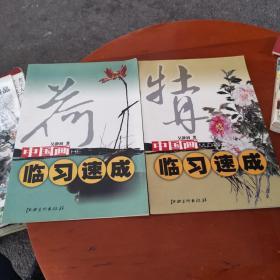中国画临习速成(牡丹.荷)2本合售
