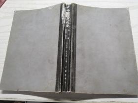 中国现代化史:第1卷 1800-1949 第一卷 许纪霖 陈达凯 主编 正版八成新 无书衣 一版一印