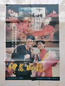 神凤成龙彩色遮幅式故事片宣传海报